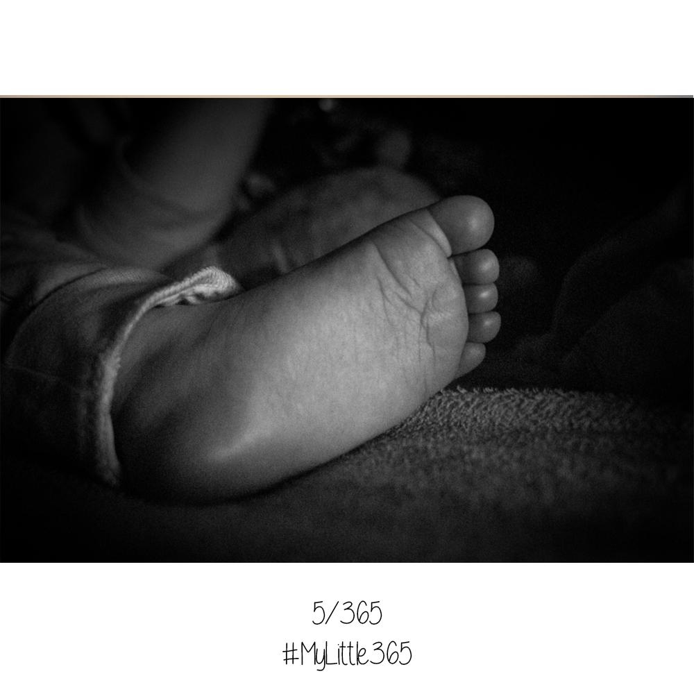 MyLittle365-5