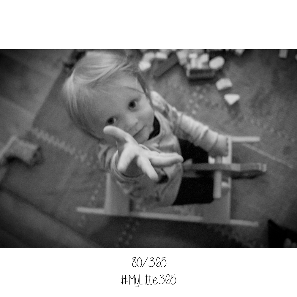 MyLittle365-80