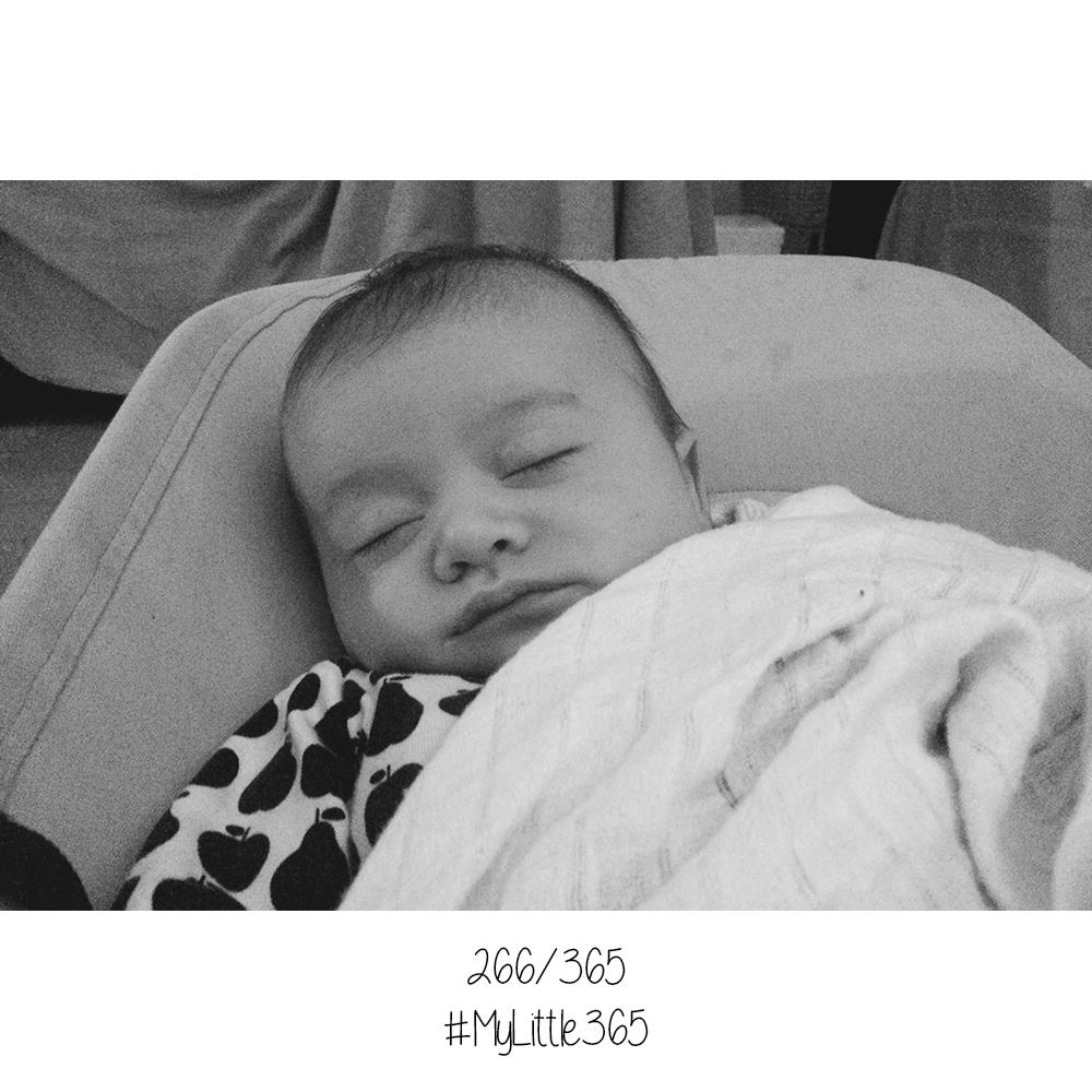 MyLittle365 #266