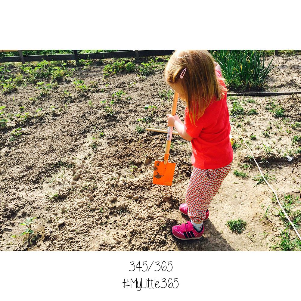 MyLittle365 #345