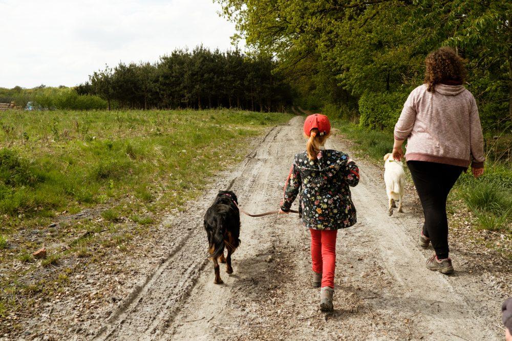 Zaklinaczka psów - Dzikość serca - MyLittleAntS